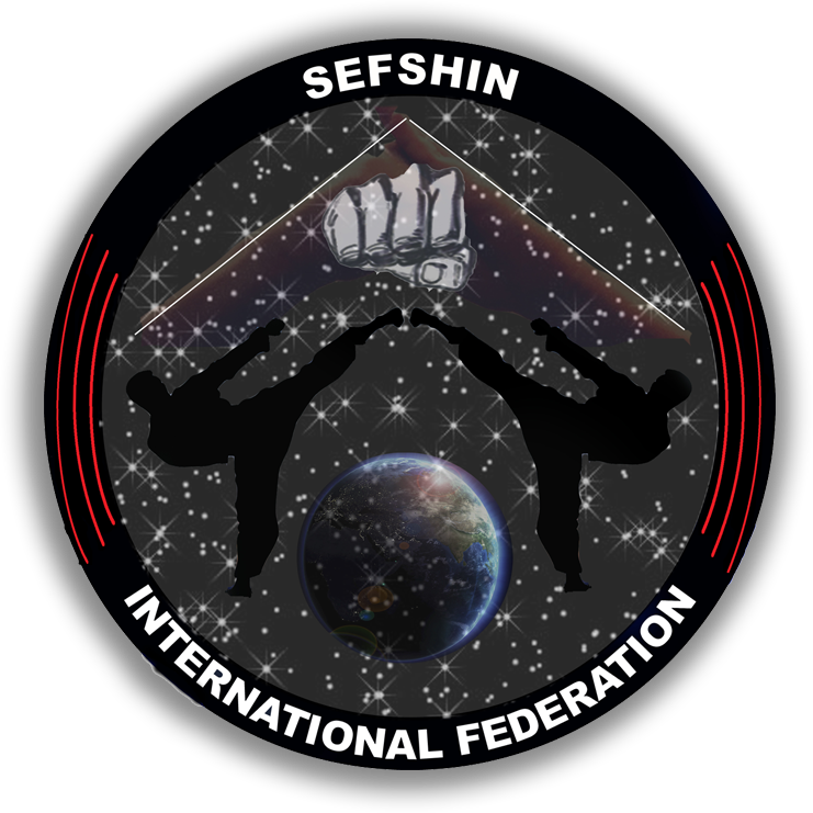 Mehdi-Zand-Sefshin-International-Federation-Exordium-